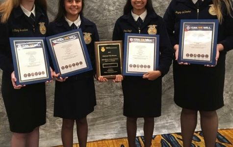 Cambridge FFA Sweeps Nationals for Second Consecutive Year