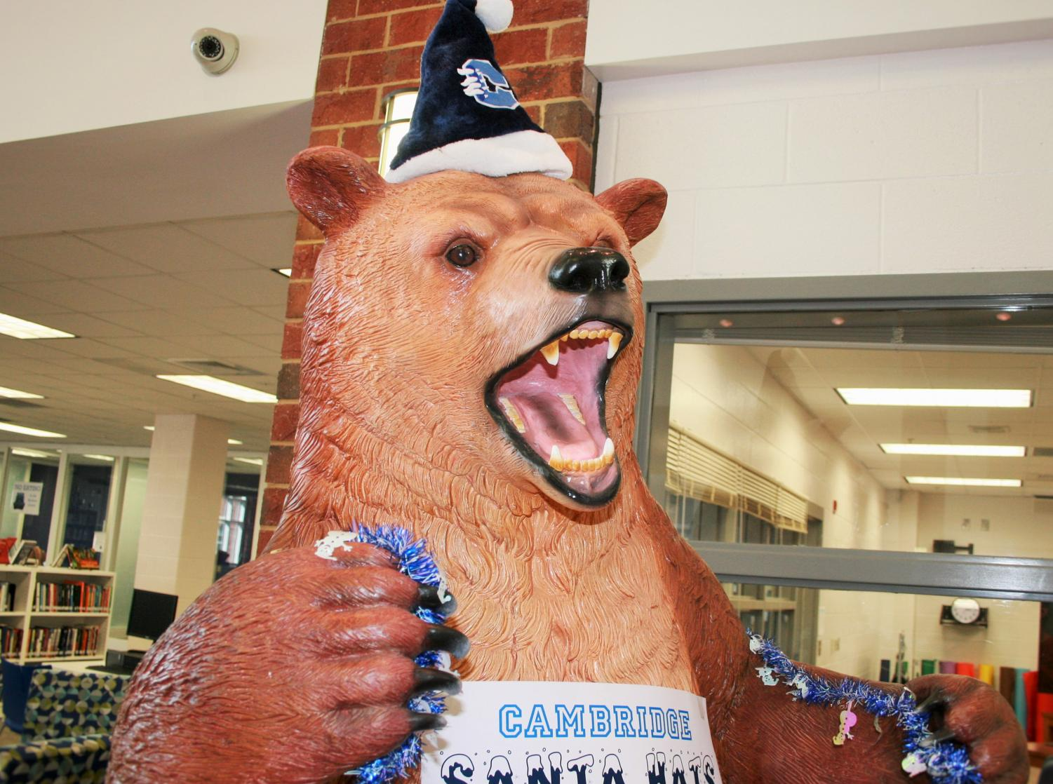 The Cambridge bear is all dolled up for the holidays.