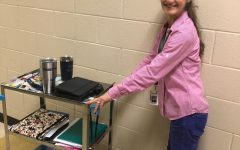 "The Classroom ""Cart System"": Is it Confusing or Creative?"