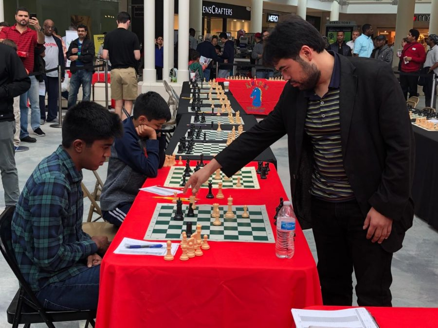 Student by Day, Chess Champion by Night: One Bear's Journey to